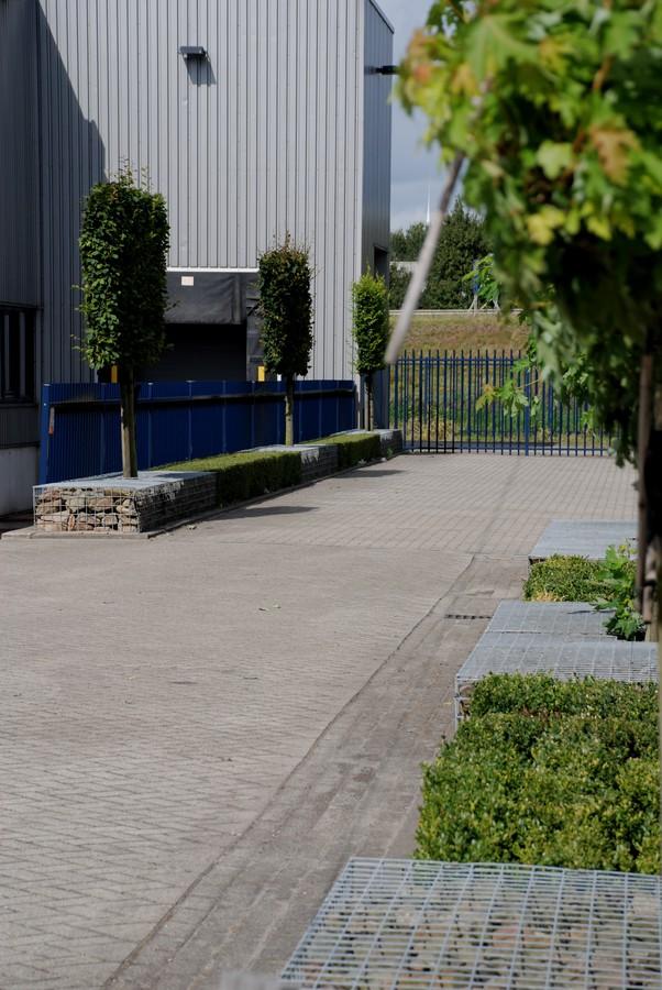 2009-09-05-oosterhout-15